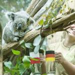 پیشبینی حیوانات از برنده بازی آلمان - لهستان