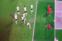 alman -penalti