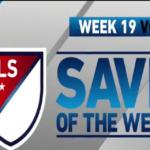 save week19