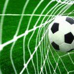 طرفدار مسن فوتبال