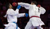 لیگ جهانی کاراته