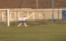 سوتی فوتبالی ؛ آرش برهانی