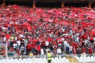 محمد جواد پاینده - هواداران تراکتورسازی