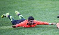 یکی از هواداران به انتقاد از عملکرد بیرانوند دروازه بان تیم فوتبال پرسپولیس در فرودگاه پرداخت
