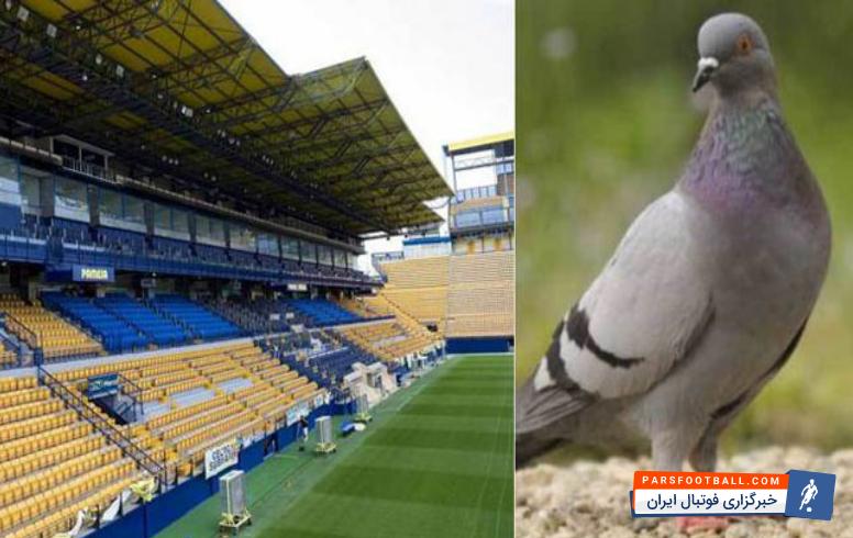 هجوم کبوتران به ورزشگاه اختصاصی باشگاه ویارئال