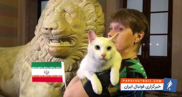 گربه پیشگو تیم ملی را برنده مسابقه امروز دانست گربه پیشگوی روسی تیم ملی ایران را به عنوان برنده بازی نخست گروه B جام جهانی ۲۰۱۸ برابر مراکش اعلام کرد.