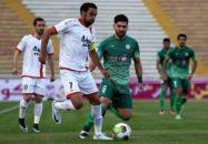 محمدرضا ناصحی - رضا ناصحی