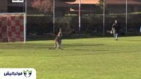 جام جهانی ؛ فیلم ؛ بازیگوشی کانگورو در زمین فوتبال در کشور استرالیا