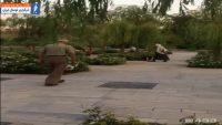 روپایی زدن پیرمرد ایرانی در پارک