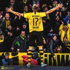 ارلینگ هالند جوان که با پرداخت 20 میلیون یورو به باشگاه سالزبورگ، به جمع زنبورها پیوسته است، با پیراهن شماره 17 به کار خود در آلمان ادامه خواهد داد.