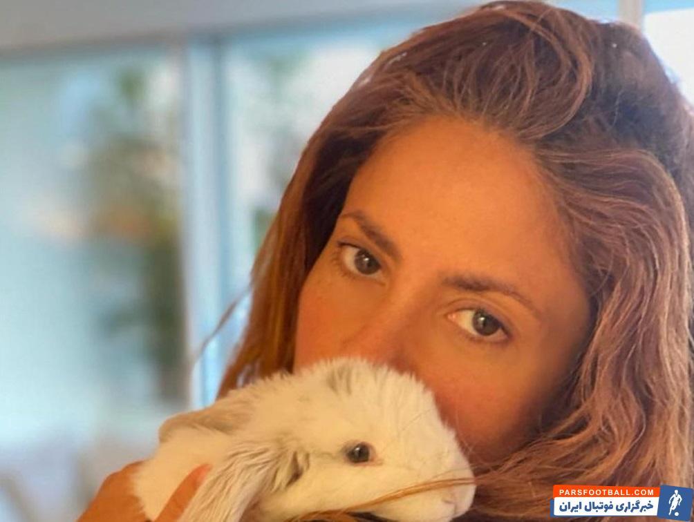 شکیرا همسر کلمبیایی پیکه شخصیتی بسیار اهل خانواده دارد و در شبکه های اجتماعی معمولا شرایط زندگی شخصی خود را با هوادارانش به اشتراک می گذارد.